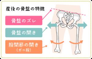産後の骨盤の特徴